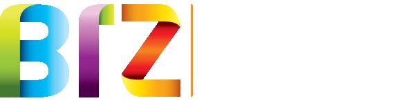 BIZ Online